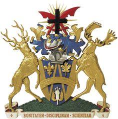 University of WIndsor. 1971 - 1977 Bachelor of Commerce & Bachelor of Arts