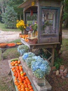 Someday the homestead will have it's own little farm stand to supply fresh produce and eggs to our community. Until them, I'm farm stand dreaming.