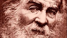 Walt Whitman fue un maestro de la lítica de verso libre, polémico y con una intensa vida a sus espaldas en la que trabajó como poeta, enf...
