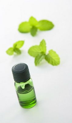 How to Perform Lung Cleansing With Peppermint Oil