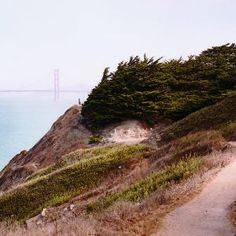 Secrets of the Outer Richmond - SF day trip