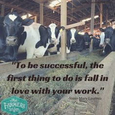 Ag Quote Inspiration I 3 Ag #foodthanks  Agriculture  Pinterest  Ffa Farming And