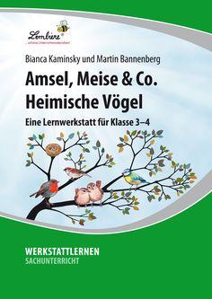 76 best Unterrichtsmaterialien Sachunterricht images on Pinterest in ...