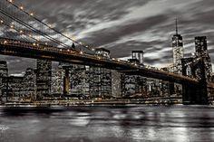 Assaf Frank - New York