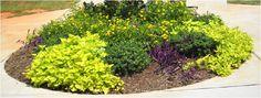 croto en el jardin - Buscar con Google
