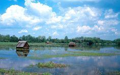 Výsledek obrázku pro třebonsko Mountains, Nature, Travel, Voyage, Viajes, Traveling, The Great Outdoors, Trips, Mother Nature