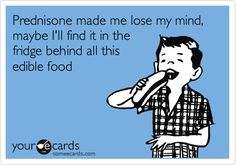 Prednisone made me lose my mind, maybe I'll find it in the fridge behind all this edible food.