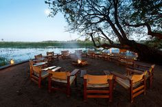 Abu Camp - With its shady trees and views overlooking the tranquil lagoon, Abu Camp is a haven of peace and seclusion. Shady Tree, Okavango Delta, Wildlife Safari, Outdoor Furniture Sets, Outdoor Decor, Tour Operator, Hotel Lobby, Holiday Destinations, Dream Vacations