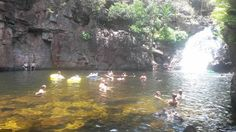 Florence Falls, Litchfield Park NT This is a must go and visit and the water is beautiful to swim in. It is about hours out of Darwin. You can hire a car or do a tour Darwin Nt, Litchfield Park, 5 Hours, Great Places, Places To Visit, Swimming, Australia, Water