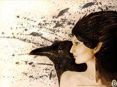 Ravens by Ogla