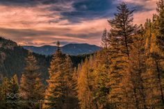 More Beauty of Colorado (Randy Poll / Colorado Springs / USA) #Canon EOS 6D #landscape #photo #nature