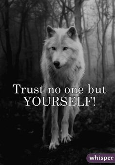 Trust no one but YOURSELF!