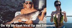 De Vis Bh Gaat Viral Op Het Internet! (25 foto's)