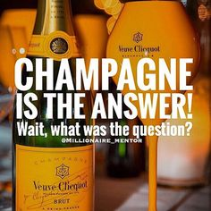 #repost from our friends over @millionaire_mentor We couldn't agree more #champagnegoeswitheverything #bubbly