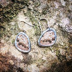 Hackberry Earrings Wings, Butterfly, Personalized Items, Earrings, Jewelry, Ear Rings, Jewlery, Jewels, Jewerly
