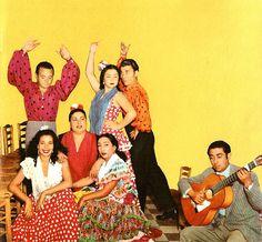 Flamenco Record Cover