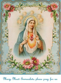 Mary, Most Immaculate, please pray for us.