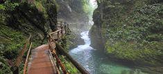 Stezka vede po dřevěných mostech