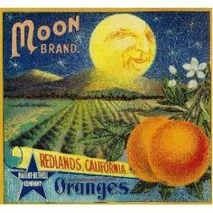 like it Amazoncom Redlands Moon Orange Citrus Fruit Crate Box Label Art Print Everything Else
