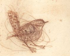 Bird etching: simple