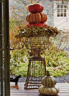 Once the flowers have faded, use your garden wire pieces to create stunning architecture at your door.      Google Image Result for http://4.bp.blogspot.com/_Q6BCoJeb6xM/TLdtQlLZXpI/AAAAAAAAArU/-0YUB3I64kI/s1600/Pumpkins%2Bin%2Bwire%2Burn.jpg
