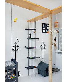 cat play area-- totally gonna be those people Animal Room, Cat Towers, Cat Shelves, Cat Playground, Cat Room, Cat Cafe, Cat Condo, Pet Furniture, Space Cat