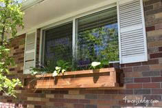 DIY Window Boxes with Ace Blogger @4men1Lady