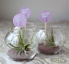Say thank you to your guests with a mini terrarium.