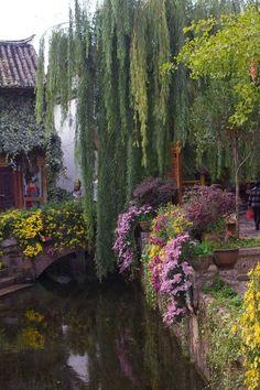 exoticana:  Lijiang, China