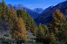 Autumn in Grisons Explore, Mountains, Nature, Travel, Viajes, Naturaleza, Destinations, Traveling, Trips