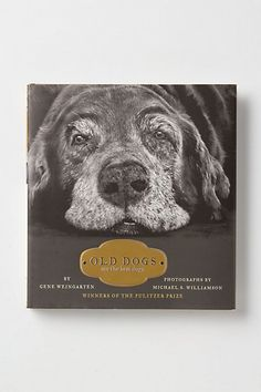 Old Dogs Are The Best Dogs #anthropologie