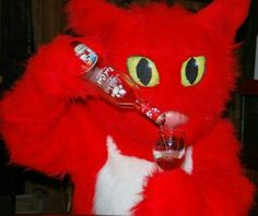 A little Red Cat in my glass too please!