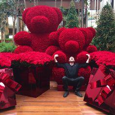 PHOTO Jeff Leatham : ce designer floral que tout le monde s'arrache - FDT Luxury Flowers, My Flower, Beautiful Flowers, Flower Decorations, Wedding Decorations, Jeff Leatham, Arte Floral, Flower Boxes, Red Roses