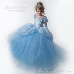 HALLOWEEN DELIVERY NEEDS RUSH_PURCHASE Cinderella Costume