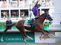 THE WINNER California Chrome 2014 Kentucky Derby Best Birthday Ever!!!