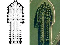 Marinus Boezem's green cathedral built from trees to replicate Notre Dame.