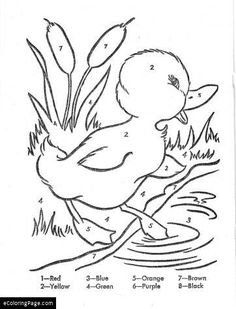 color by numbers duck dibujos para colorear pato