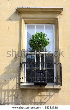 Architectural detail of a window and a wrought iron window veranda, with a small tree in a window box. Location in Bath, Wiltshire UK. by Naffarts, via ShutterStock