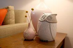White owl #2: From MakingItLovely, white owl canister