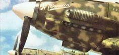 Macchi Mc 202 - Regia Aeronautica