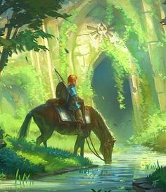 Botw loz Breath of the wild Legend of zelda Link