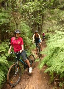 Book your mountain biking with Hogsback Adventures in the Eastern Cape, South Africa - Dirty Boots Abseiling, The Perfect Getaway, Bungee Jumping, Deep Sea Fishing, Adventure Activities, Places Of Interest, Mountain Biking, Places To See, South Africa