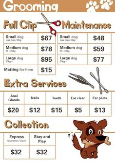 Price List Grooming -550×777 Paddington Pups