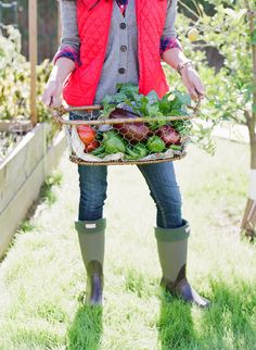 Diana Elizabeth Home & Lifestyle Blog - Gardening at Home by Melissa Schollaert Photography