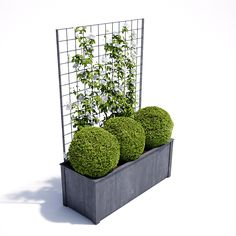 Garden Planters in zinc galvanized steel. High quality bespoke steel planters in square and trough designs. Large, heavy duty planters for exterior use. Metal Garden Trellis, Metal Garden Fencing, Decorative Garden Fencing, Wall Trellis, Garden Troughs, Garden Planter Boxes, Trough Planters, Wood Planters, Long Planter
