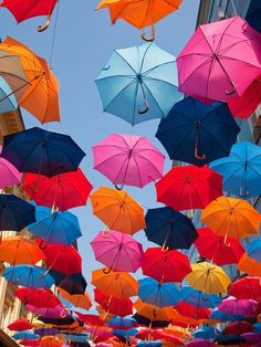 #rainbow umbrellas