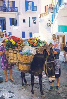 Donkeys and grannies in Greece