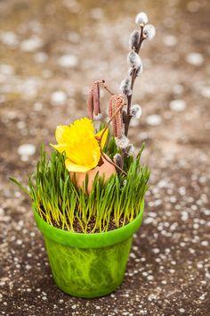 V jednoduchosti je krása, takže žlutý akcent narcisu nebo červený tulipán bohatě stačí, a už nemusíte ani nijak dekorovat květináč. Jak vidíte, tak v plastovém zahrají svou dekorativní roli i kořínky osení; Eva Malúšová