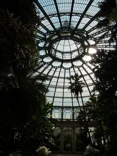 Conservatory Ceiling.