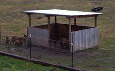 Your basic sheep shelter